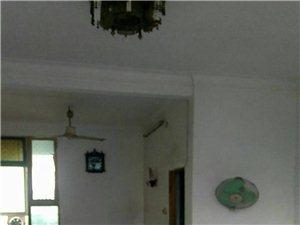 老地名:皮房,交警队右则2室2厅1卫20万元