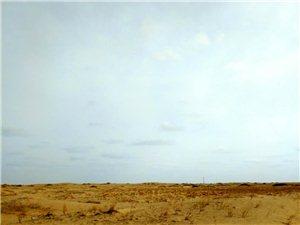 民勤沙漠风情