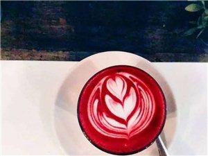 懂一个人和懂一杯咖啡一样