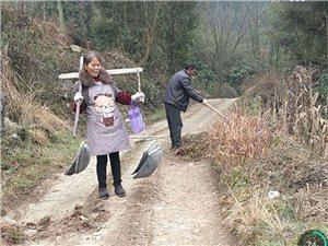 正月初二村民修�袜l村公路