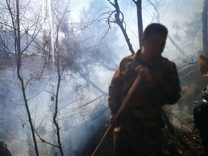 2018年正月初二澳门金沙平台娱乐县发生森林火灾