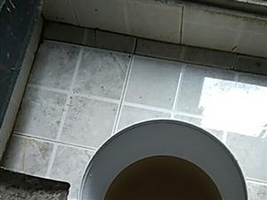 五龙镇水厂的同志请你喝几口自来水