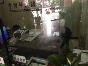 苍溪三桥邮政储蓄上班不办事玩手机