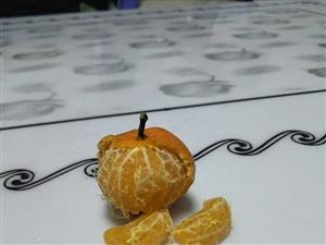 万隆超市的砂糖橘没法吃