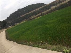 耕地属于农田保护区吗,