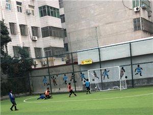受河南青训联盟邀请,杞县青少年足球训练基地派出八名来自开封求实弘立校区的0910年龄段小球员参加河南