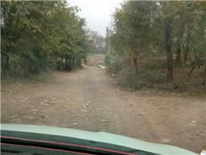 乡村公路全是水泥,10多年了还是这样