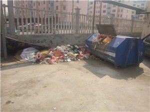 邹城市唐村镇某处垃圾遍地无人问