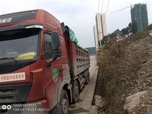 中国重汽车