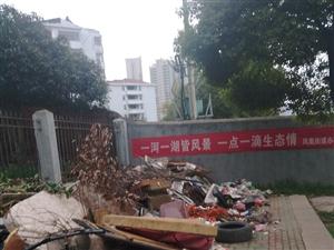沿湖道路成了垃圾堆吗?