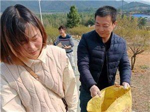 峡江老乡户外活动群寒梅岭公益环保活动