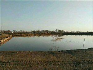 在澳门轮盘赌场县附近有一鱼池(水面25亩,水田地70亩,房屋内设有多个单间适合做餐饮150多平)整体对外承包...
