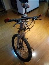 出售新山地自行车一辆700元