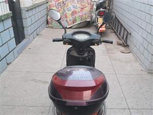 雅迪电动车,无毛病,因用不到了,低价出售!