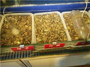出售各种小海鲜,高档海鲜