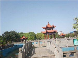 才发现凤城有这么美的地方