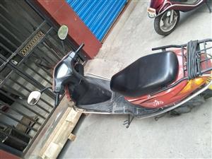 隆鑫125踏板车2台出售。手续齐全。不包过户。电话13980158060