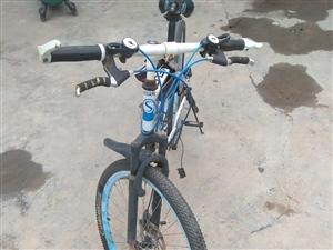 自行车,德州齐河看车