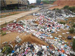 垃圾乱倒,污染环境