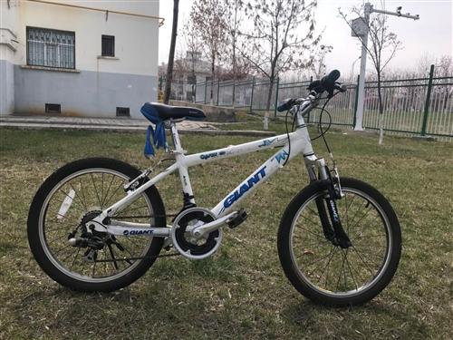 捷安特山地車自行車(兒童款)規格:20、白色、12速、八成新、鎖具齊全,非誠勿擾。