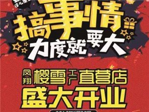 凤翔樱雪厨电工厂直营店4月22号盛大开业