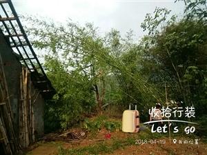 大坝红旗村一会大雨滂沱夹杂冰雹,我家房子成这样了。