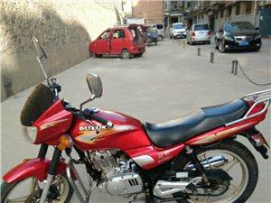 铃木钻豹摩托车
