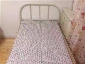和平小区女床位出租