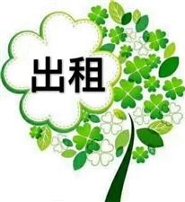 金融服务中心精装220平