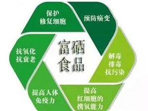 黑花生,可以吃和留种,特色农产品,有需要的联系:18613789963,微信同步王先生