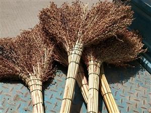 手工扎的扫把,全新,8元一把,15元两把,固镇县城内可免费送货。
