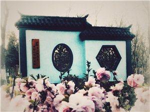 江南好,风景旧曾谙。日出江花红胜火,春来江水绿如蓝,假装在江南。
