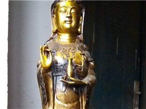 转让一尊纯铜镏金菩萨像,高约51厘米。