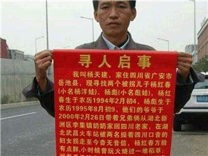 寻找两个被拐儿子杨红春杨彪