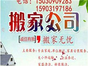 舒鑫家政服务有限公司  为您服务