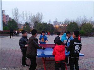 澳门威尼斯人游戏官网公园乒乓球案子丢的太蹊跷