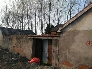 有需要旧砖瓦的独门院 三间实山瓦房,五间厢房,四万砖。合适自己带人来拆。
