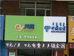 中國電信 流量管家