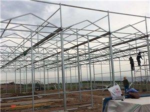 生态餐厅、连栋、日光等温室建设优秀单位