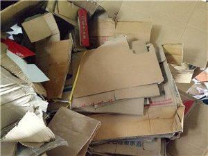 大量收廢紙