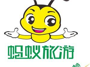 蚂蚁旅游诚招聊城代理商