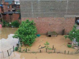 又涨洪水了!