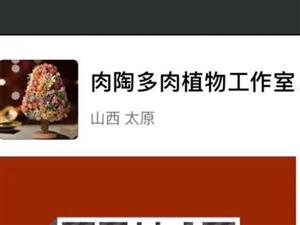 母亲节佛珠锦特价5元