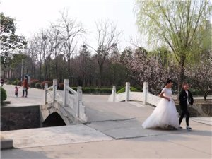 """夜拍威尼斯人注册公园里的""""断桥""""!"""