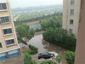 """滨州一小区雨后变小岛,业主住上""""海景房""""!"""