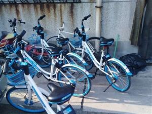 共享单车占为己用