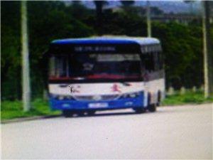 凤滩公交车低价转让