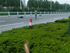 车祸猛于虎