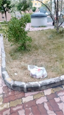 瑞景20���y扔垃圾