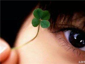 即使沒路也要繼續前行,期待,或許會有奇跡……